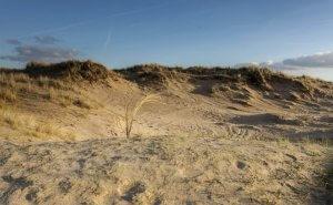 Beach Bloemendaal aan Zee/Zandvoort aan Zee
